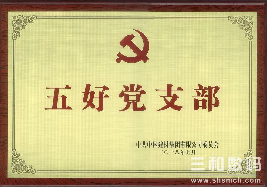 中国建材集团五好党支部(2018)